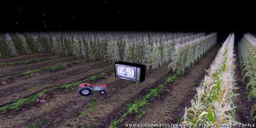second_life_cornfield.jpg