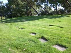 riverside-cemetery-3.jpg