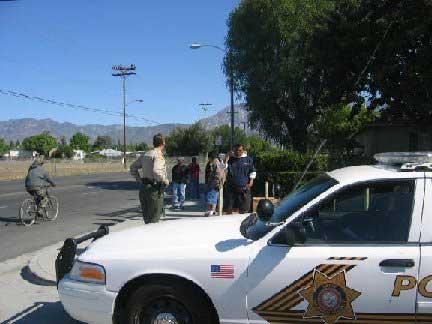 Alfredo Pacheco Arrested